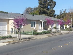 For Rent: Redwood City, CA 94061. Duplex